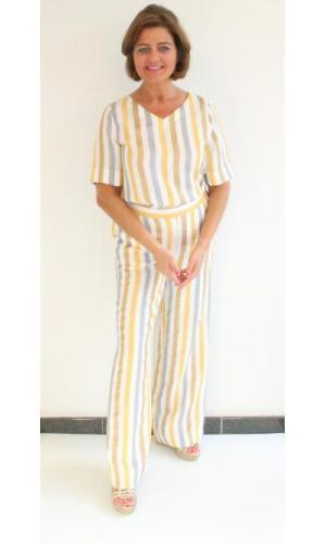 3A 11 Curry Stripe